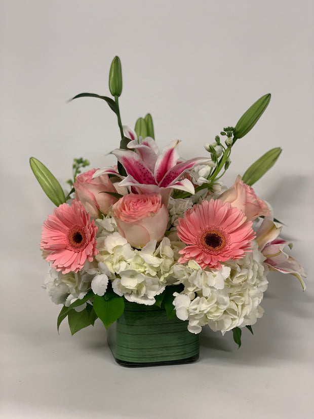 Medium Compact Arrangement