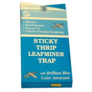 Seabright Laboratories Thrip/Leafminer Trap (Pack of 5 Units)