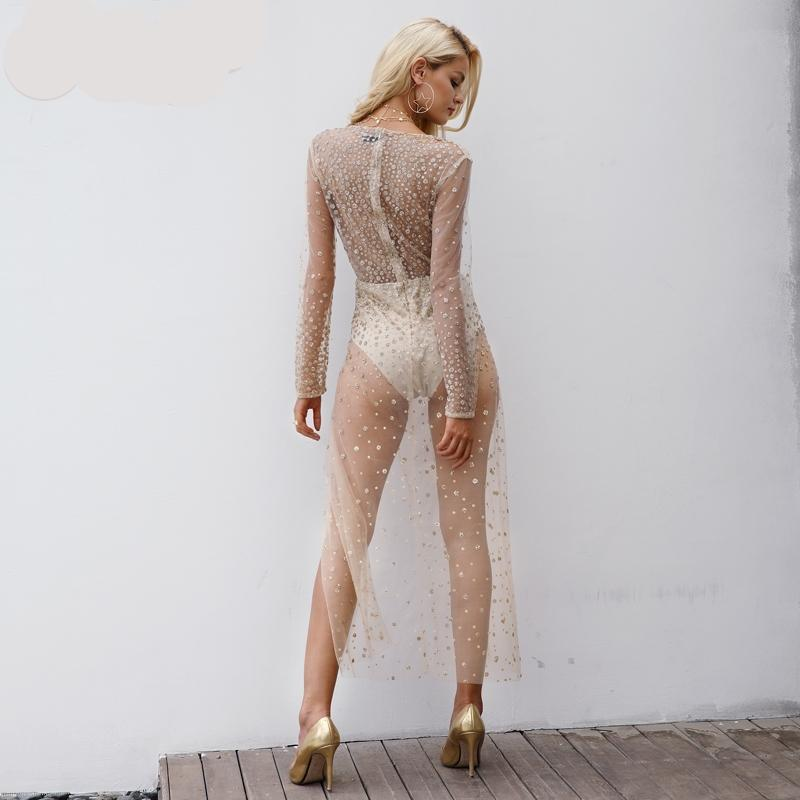 Sexy Transparent Mesh Party Dress