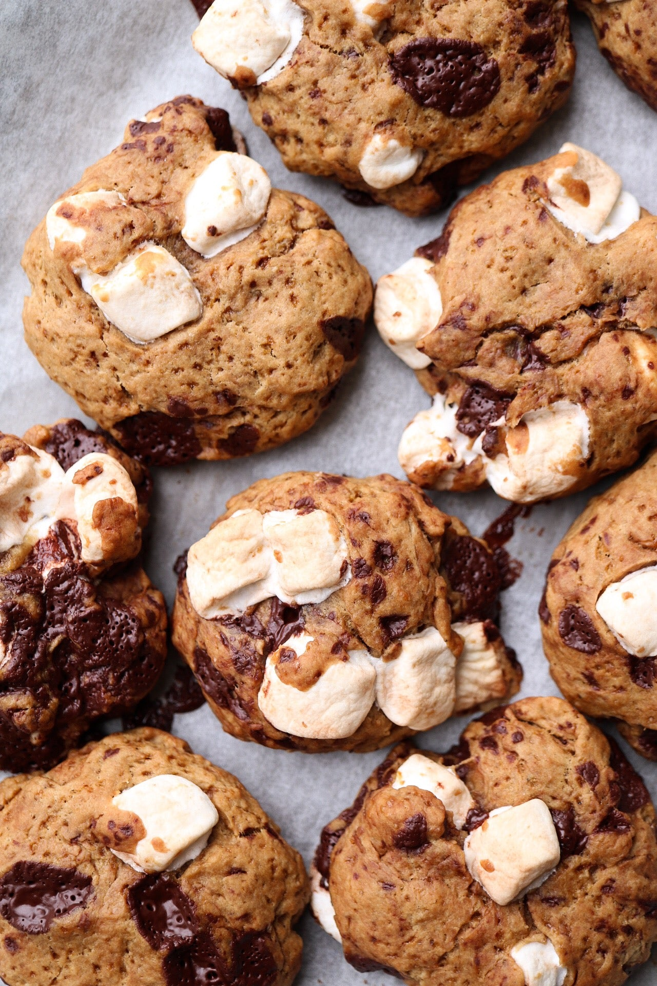 Vegan S'more Cookie Ice Cream Sandwiches Article