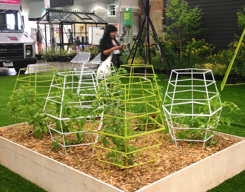 Say Hello To The Modern Tipi Trellis And Tomato Cage