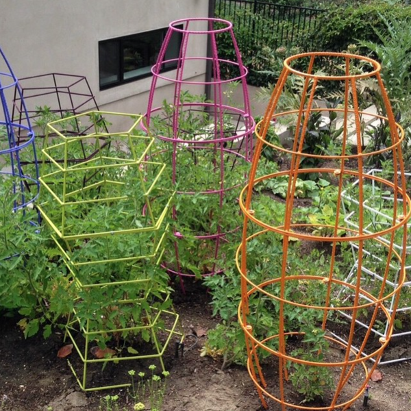 colorful strong modern tomato cage