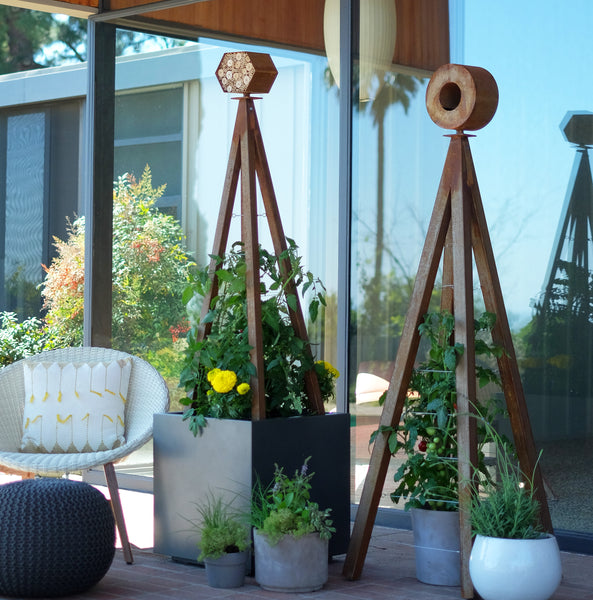 modern container garden patio edible garden