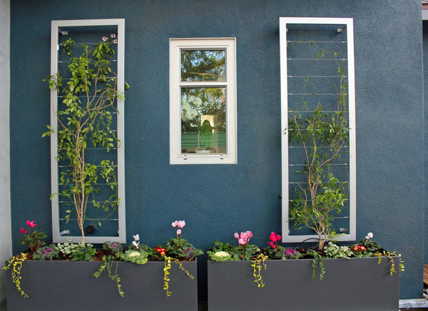 small space vertical garden trellis
