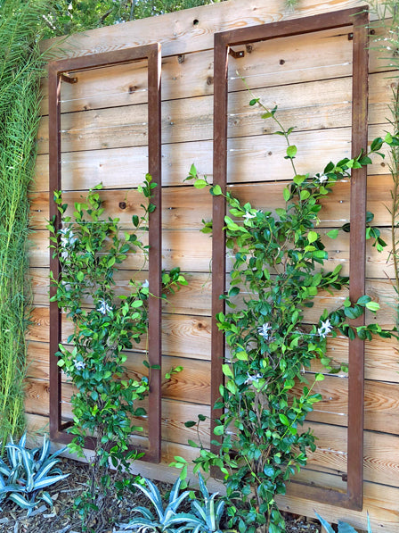 TerraSculpture/TerraTrellis | Terra Trellis | Modern Garden Trellis on wood trellis patterns, wood trellis kits, wood bed frames designs, custom wood trellis designs, wood stacking designs, wood outdoor furniture designs, wood arbor plans, wood garden art, wood for trellis, wood screws designs, wood garden gates, wood trellis designs ideas, wood trellis overhead, wood trellis design plans, wood garden wall trellis, wood trellis details, wood smokehouse designs, wood garden trellis plans, wood trellis fence plans, wood rose trellis,