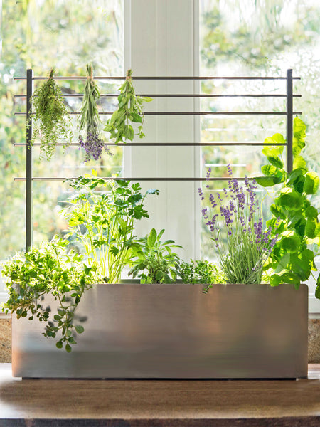 NEW! BLOOM BUNGALOW WINDOW BOX + TRELLIS COLLAB