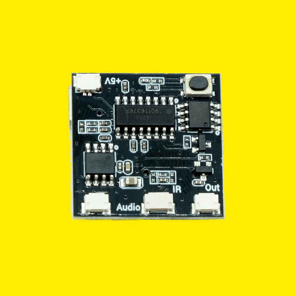 Remote Control and Sound Board (Control Board Only)