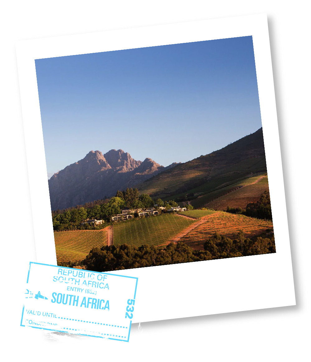 PEGGY'S POSTCARDS FROM THE EDGE: SOUTH AFRICA