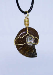 Ammonite Wire Wrapped Pendant