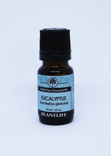 Load image into Gallery viewer, Eucalyptus - Essential Oil