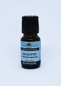 Eucalyptus - Essential Oil