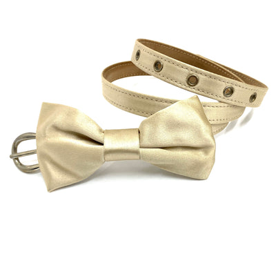D&G ribbon satin belt