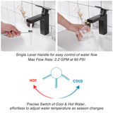 "Aquaterior Single-Hole Faucet Oil Rubbed Bronze 1-Handle Square 7.5""H"