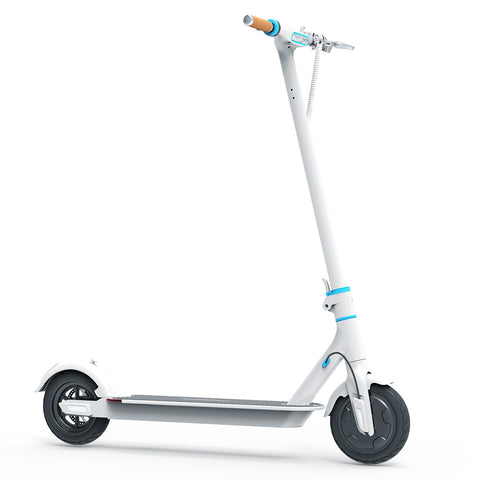 electric scooter long range and high speed