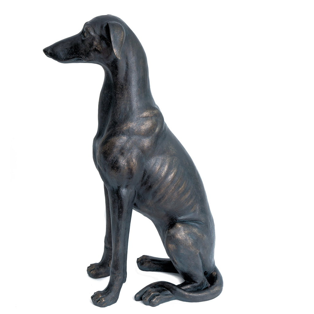 Greyhound / Doberman / Lurcher Bronze Colour Dog