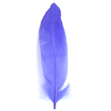Goose Feathers Pack (12pcs)