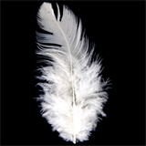 Hen Feathers Pack (5g)