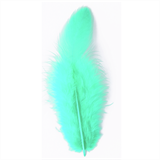 Hen Feathers