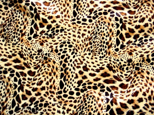 Leopard - Printed Velour