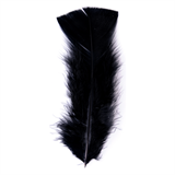 Turkey Feathers Pack (15pcs)