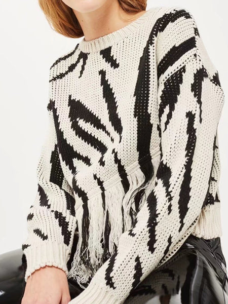 long sleeve Fringe Knit Sweater