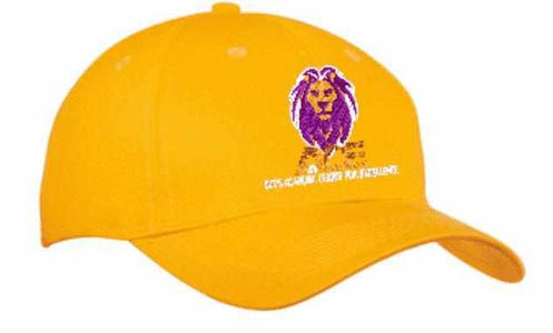 OCPS ACE Embroidered Hat - Multiple colors available (Adult and youth sizes available) Schools Becky's Boutique Purple Adult size hat