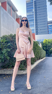 Emily Dress Blush - Alexa Nice