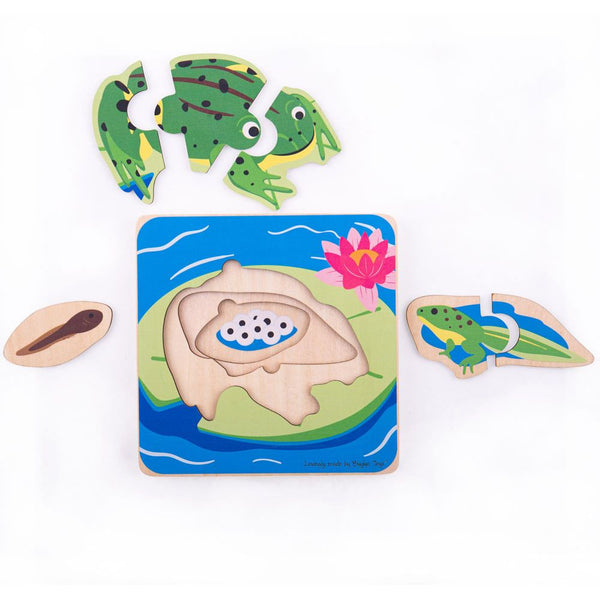 Wooden Lifecycle Puzzle - Frog from Bigjigs Toys