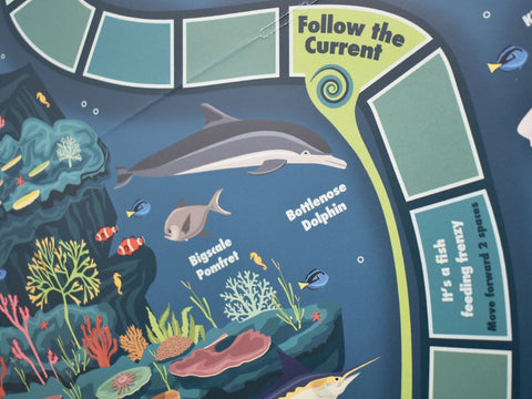 Close up of the board game where you can learn lots of new facts about sea life