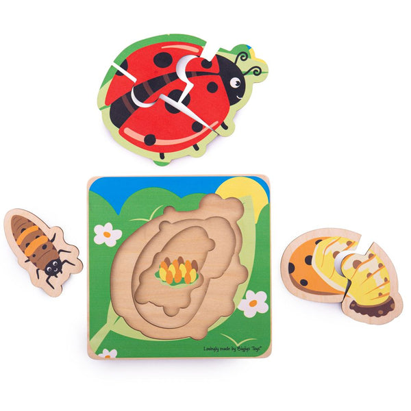 Wooden Lifecycle Puzzle - Ladybug from Bigjigs Toys