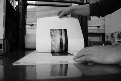 Print lift - Printmaking process - Gallery TEN - Original Prints - Etching