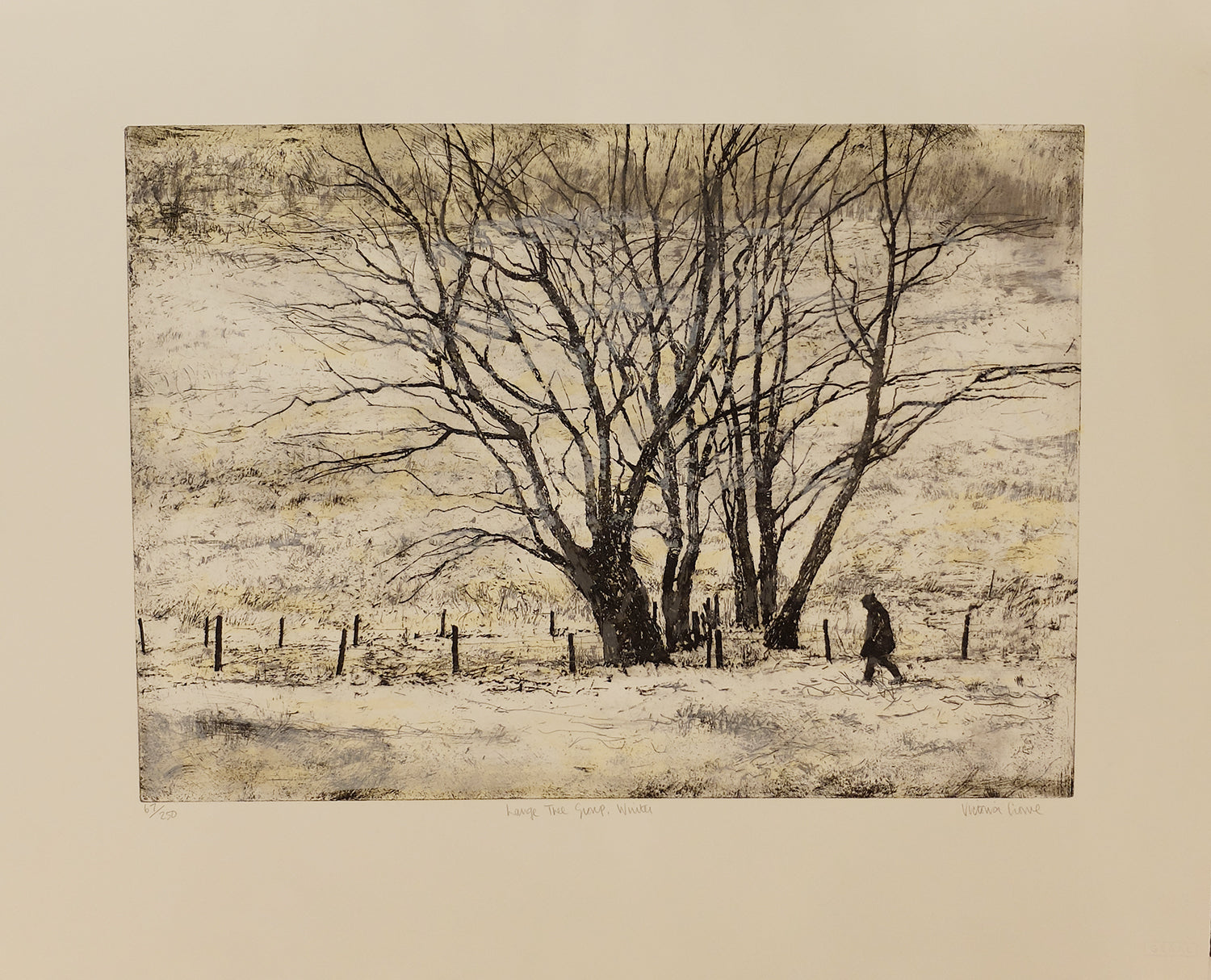 Victoria Crowe -  Large Tree Group Winter - Gallery Ten - Original Print - Graal Press