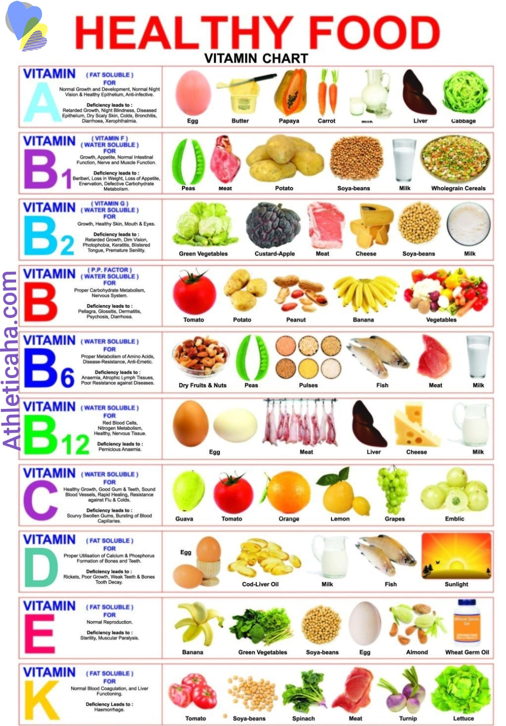 Food Source Vitamin Guide