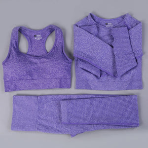 Fitness Seamless Sports Cropped Top Gym Set
