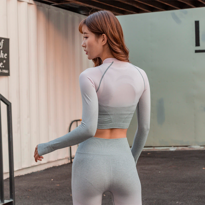 Ombre Seamless Leggings & Cropped Top Set