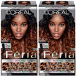 L'Oreal Paris Feria Intense Ombre Hair Color, Black O30, Hair Color, L'Oreal, reddonut.com