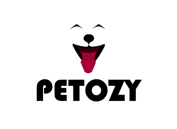 Petozy - It's More Fun To See Them Happy