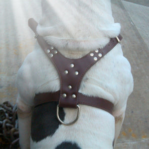 Spiked & Studded Leather Adjustable Pet Harness