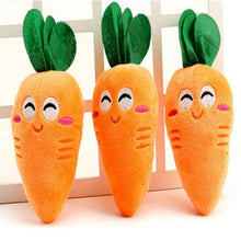 Load image into Gallery viewer, Eat Your Veggies Carrot Plush Chew Toys