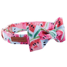 Load image into Gallery viewer, Watermelon Collar & Lead