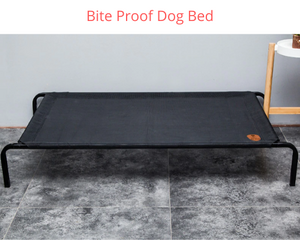 BlingDog Bite Proof Elevated Dog Bed