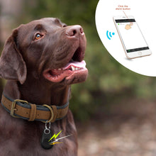 Load image into Gallery viewer, BlingDog Mini GPS Tracker Bluetooth Locator