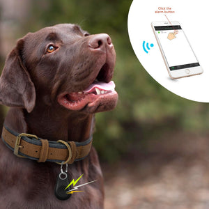 BlingDog Mini GPS Tracker Bluetooth Locator
