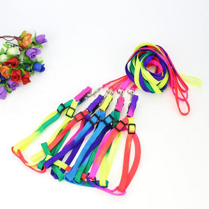 BlingDog Pride Rainbow Dog Harness With Leash - nekorandomproducts