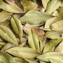 Load image into Gallery viewer, Bay Leaves (4481149468766)