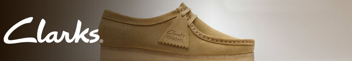 Clarks Shoes - J. Men's Clothing