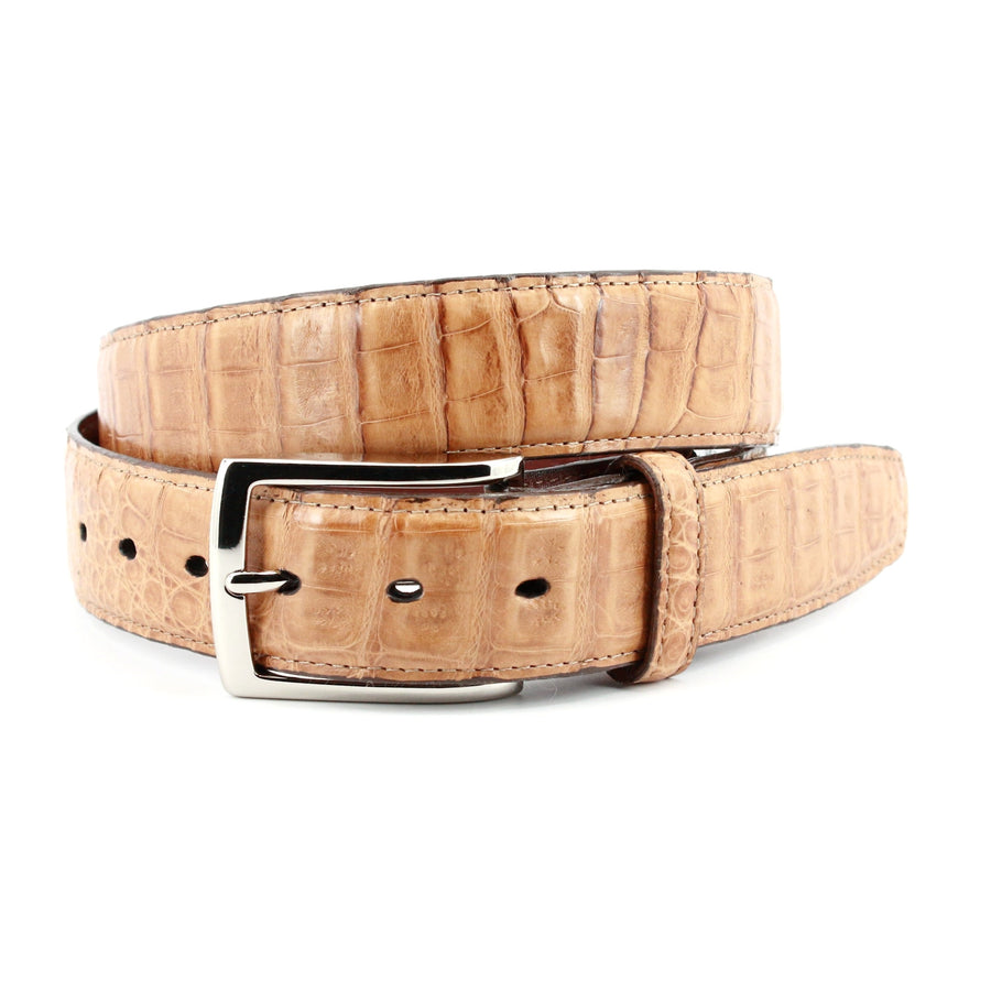 South American Caiman Belt in Saddle by Torino Leather