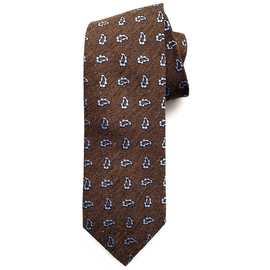 Brown and Sky Blue Neat Paisley Woven Textured Silk Tie by Bruno Marchesi