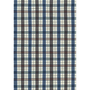 Blue and Chestnut Check Cotton Wrinkle-Free Button-Down Shirt by Viyella