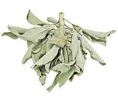 California White Sage Leaves & Clusters - 1 Pound - Earth Energy & Company